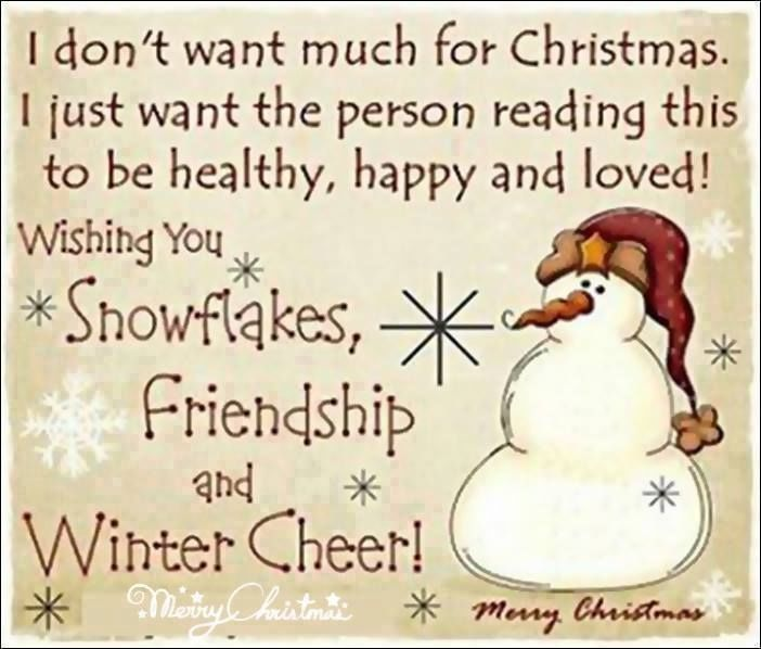 Funny Happy Xmas Quotes: I Don't Want Much For Christmas.... Pictures, Photos, And