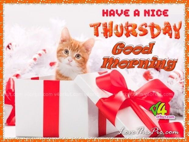 Have A Nice Thursday Good Morning Christmas Quote Pictures