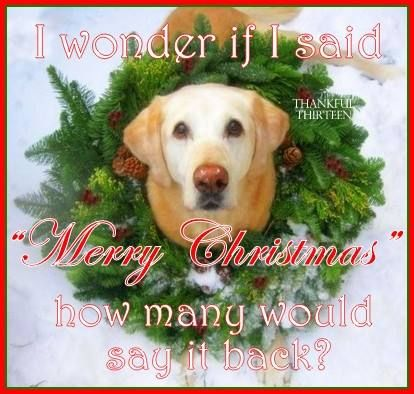 I Wonder If I Said Merry Christmas How Many Would Say It Back ...