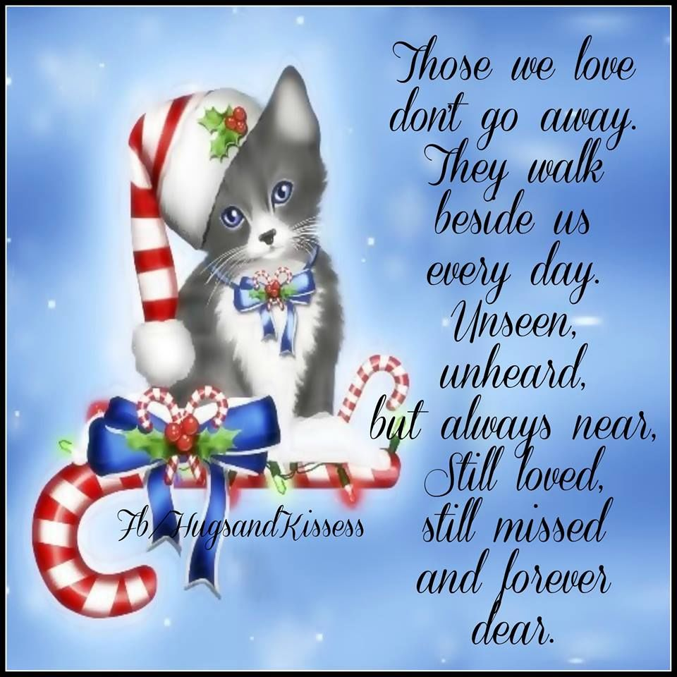 Christmas Quotes Loss Loved One: Remembering Those We Have Lost Christmas Quote Pictures