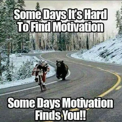 somedays motivation finds you pictures photos and images