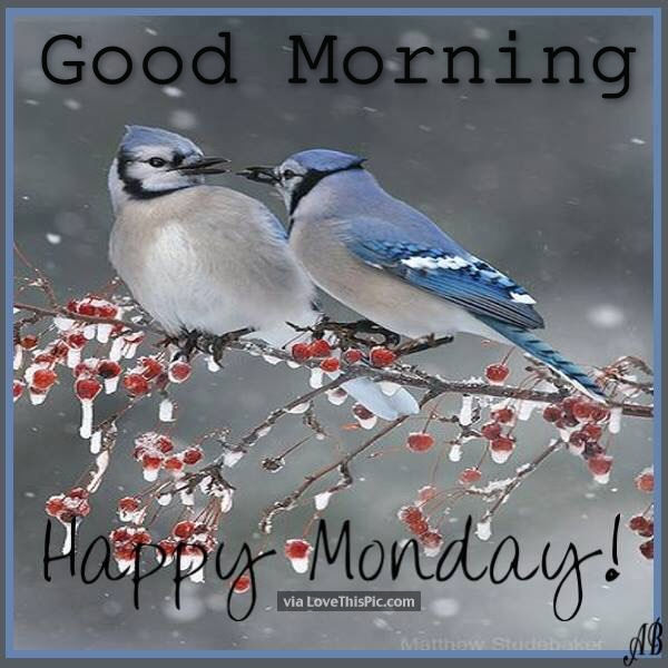 Winter good morning happy monday pictures photos and - Good morning monday images ...