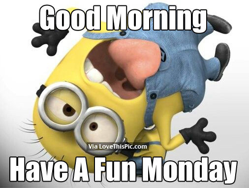 Good Morning Have A Fun Monday Pictures Photos And Images For Facebook Tumblr Pinterest And Twitter