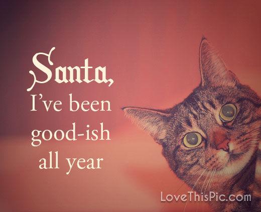 Santa, Iu0027ve Been Goodish All Year