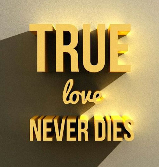 True Love Never Dies Pictures, Photos, And Images For