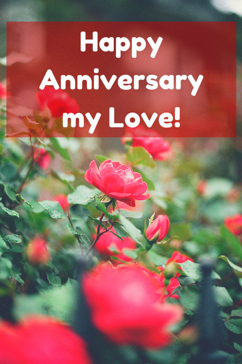 Happy Anniversary My Love Pictures, Photos, and Images for