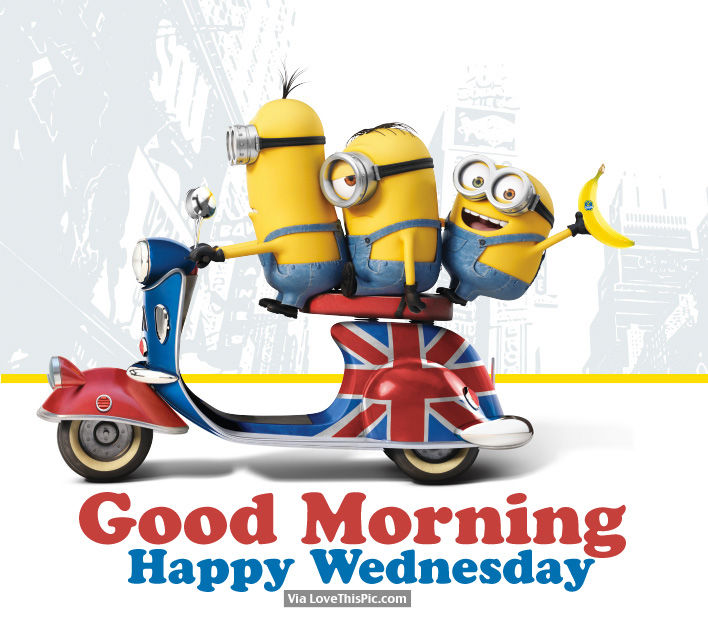 Good Morning, Happy Wednesday Pictures, Photos, And Images