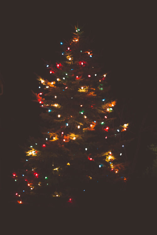 Colorful Lit Christmas Tree In The Dark Pictures, Photos, and ...
