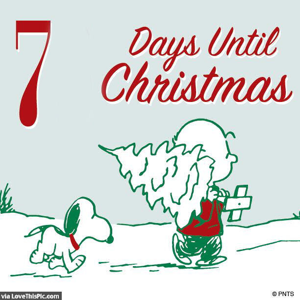 Until Christmas.Snoopy 7 Days Until Christmas Quote Pictures Photos And