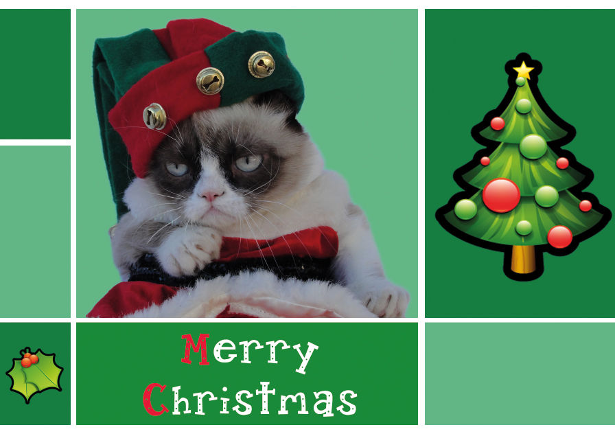 Merry Christmas From Grumpy Cat Pictures, Photos, and Images for ...