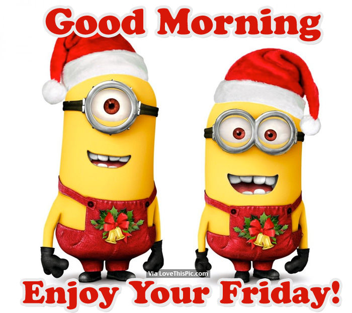 Good Morning Enjoy Your Friday Pictures Photos And Images For