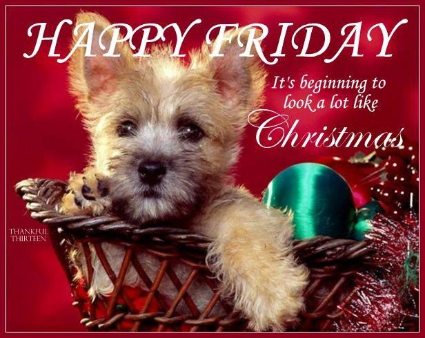 Happy Friday Its Beginning To Look A Lot Like Christmas Pictures ...