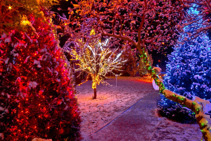 Beautiful Outdoor Christmas Lights