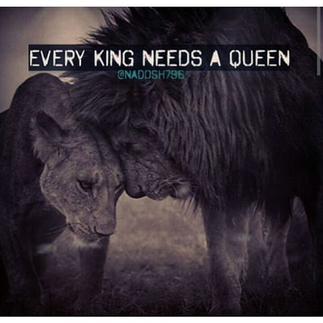 Every King Needs A Queen Pictures, Photos, And Images For Facebook, Tumblr,  Pinterest, And Twitter
