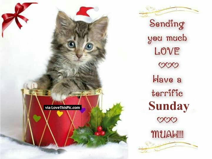 Sending You Sunday Love Pictures, Photos, and Images for ...