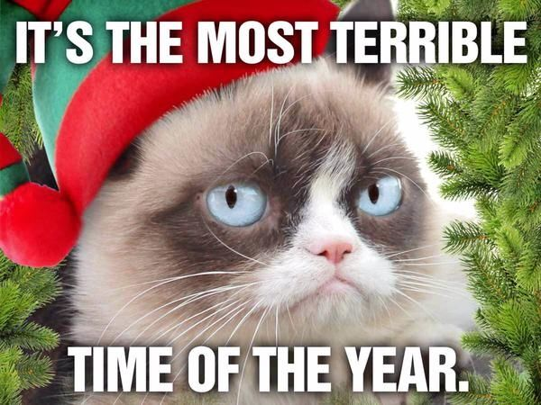 funny i hate valentines day quotes - Its The Most Terrible Time The Year s