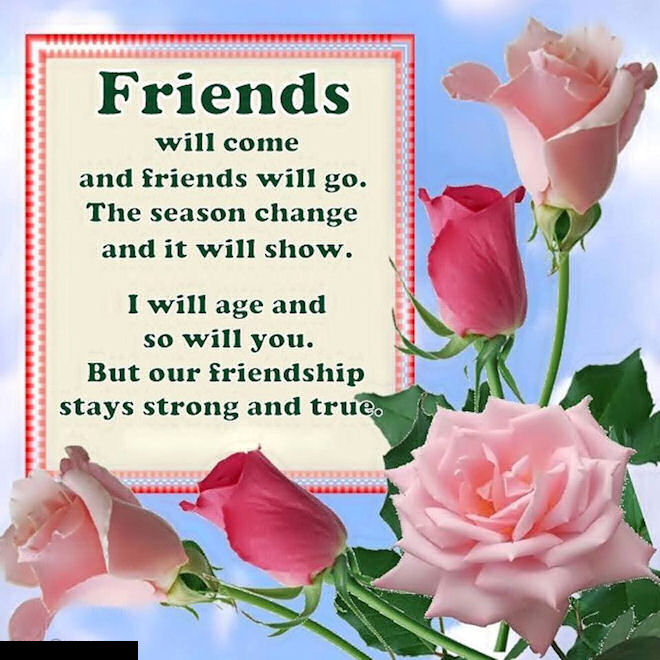 Image result for friends quotes lovethispic