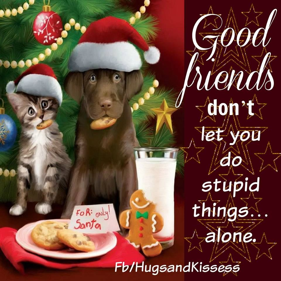 Delicieux Cute Christmas Quotes About Friendship