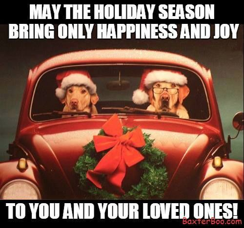 May The Holiday Season Bring Only Happiness And Joy To You