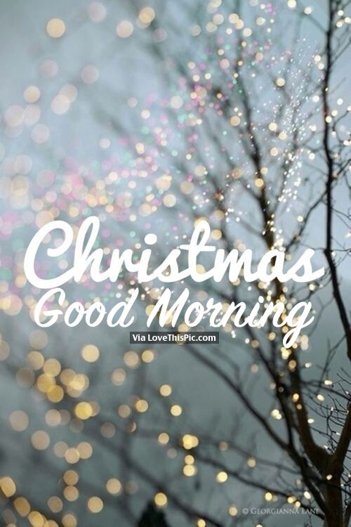 beautiful christmas good morning quote pictures photos