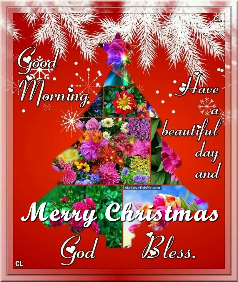 Good Morning Merry Christmas God Bless Pictures, Photos, and ...