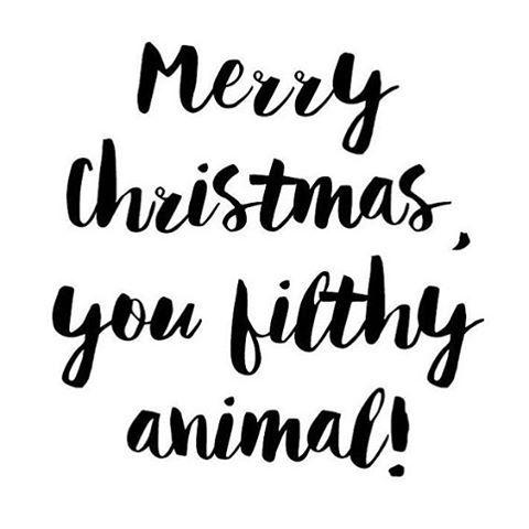Merry Christmas You Filthy Animal