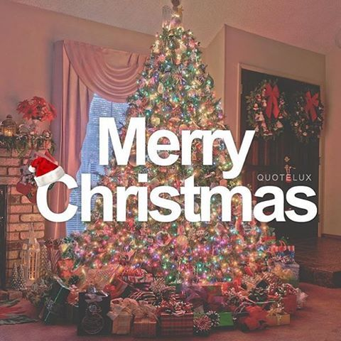 Merry Christmas Quote With Christmas Tree
