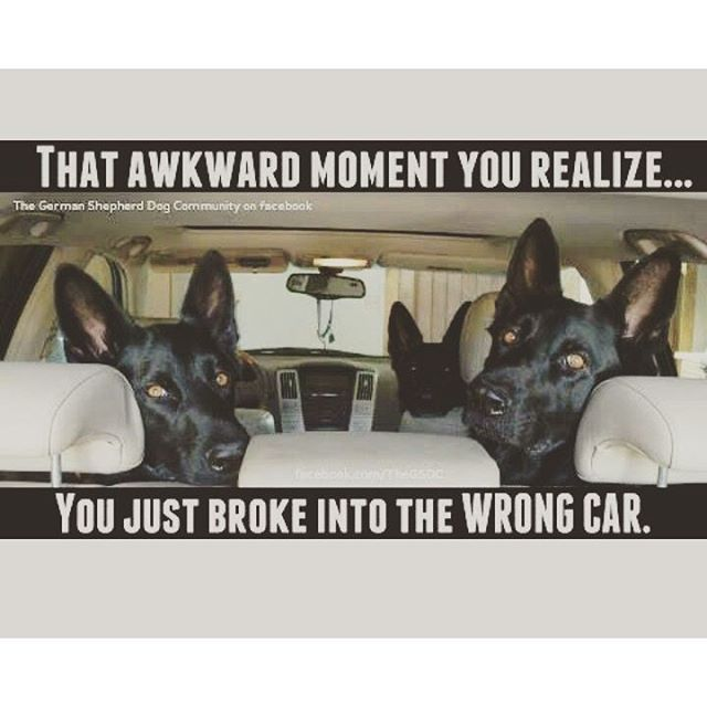 U broke my car