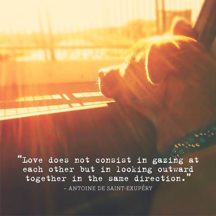 Love Does Not Consist In Gazing At Each Other But In