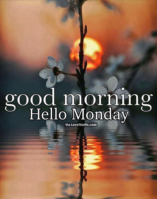 Good Morning My Love Monday : Good morning hello monday pictures photos and images