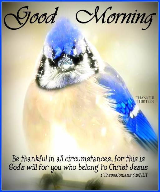 Religious Good Morning Quote About Being Thankful Pictures Photos Stunning Good Morning Spiritual Quotes