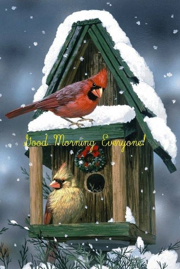 Good Morning Everyone Winter Quote Pictures Photos And