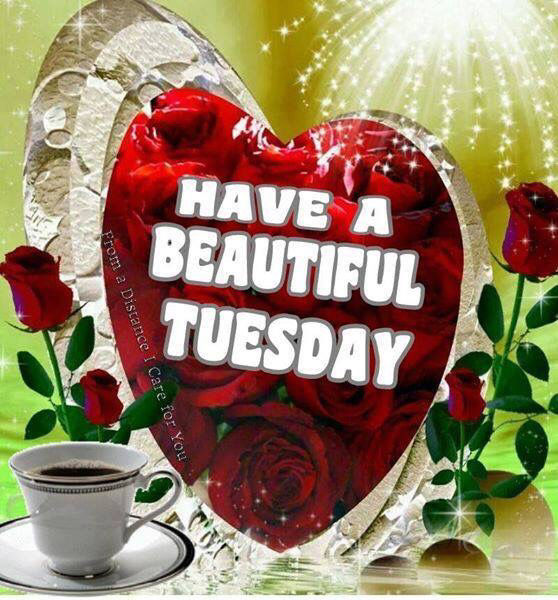 Have A Beautiful Tuesday Pictures Photos And Images For