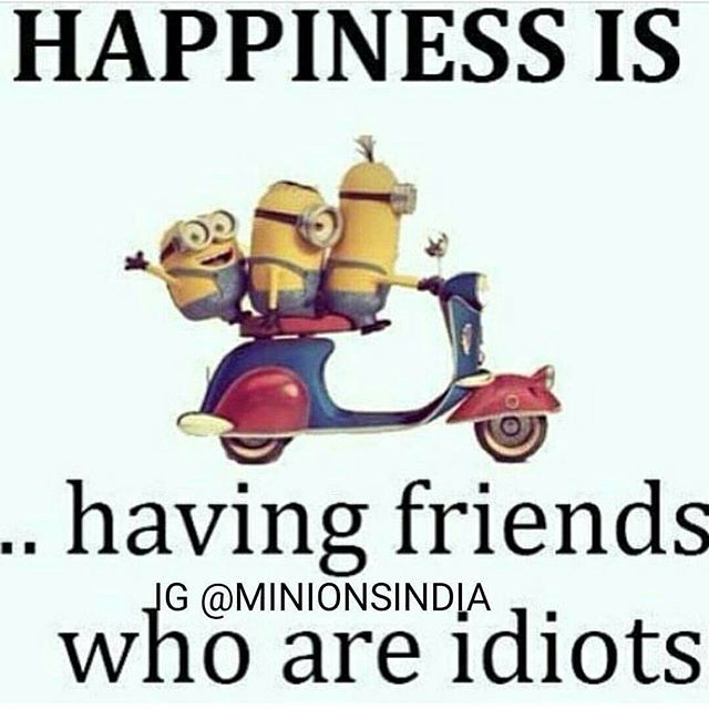 Happiness Is Having Friends Who Are Idiots Pictures, Photos, and
