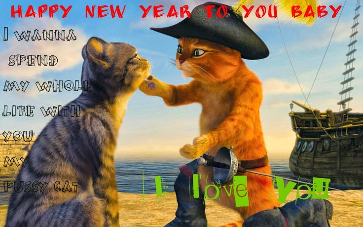 new years love for you pussy cat