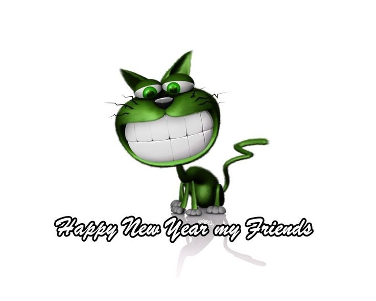 happy cat new year pictures photos and images for facebook tumblr