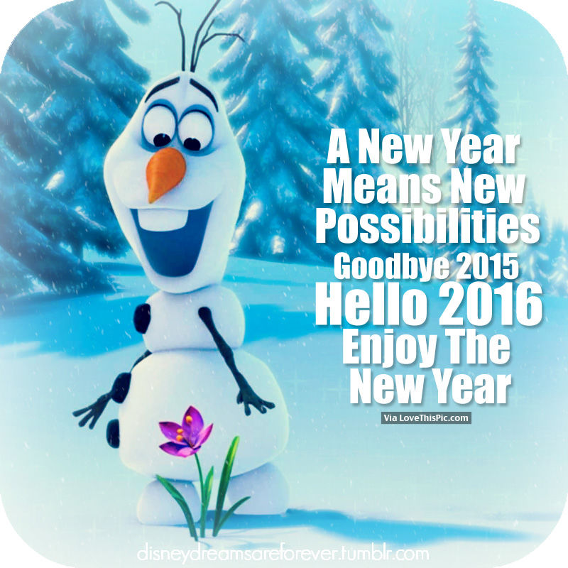 a new year means new possibilities goodbye 2015 hello 2016 enjoy the new year