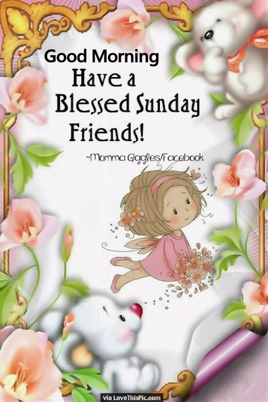 Good Morning My Love Have A Blessed Sunday : Good morning have a blessed sunday friends pictures
