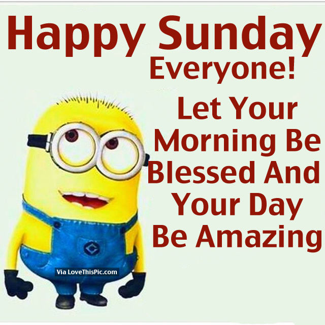 Good Morning Everyone Sunday : Happy sunday everyone pictures photos and images for