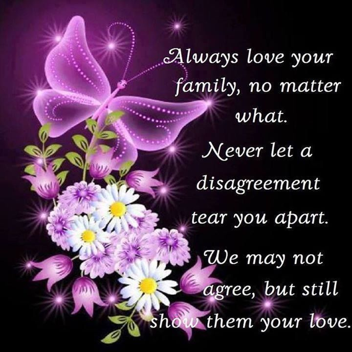 Love Your Family Quotes Always Love Your Family No Matter What Pictures, Photos, and  Love Your Family Quotes