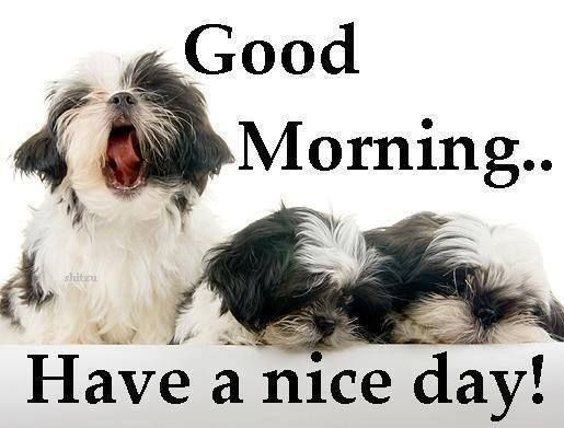 Image of: Heart Good Morning Have Nice Day Cute Quote With Dogs Vmhuntershillcom Good Morning Have Nice Day Cute Quote With Dogs Pictures Photos