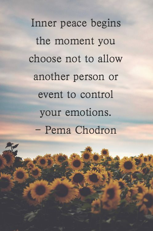 Inner Peace Begins The Moment You Choose Not To Allow