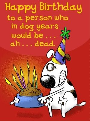 Happy Birthday Funny Quote About Age Pictures, Photos, and ...