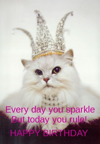 Today You Rule Happy Birthday Pictures Photos And Images