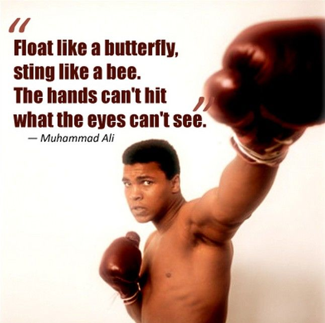 Float Like A Butterfly Pictures, Photos, and Images for ...