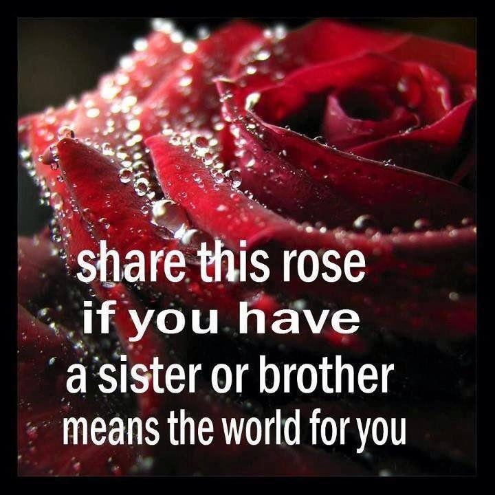 Brother And Sister Love Quotes Glamorous Sister Or Brother Pictures Photos And Images For Facebook