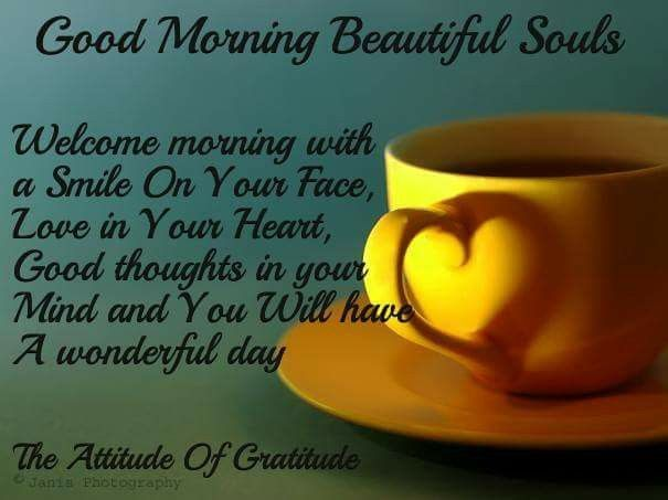 Good morning beautiful souls welcome the morning pictures for A day in the life of a minimalist