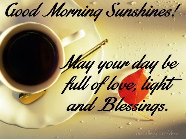 Good Morning Sunshines Pictures Photos And Images For