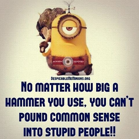 You Can\'t Pound Common Sense Into Stupid People Pictures ...