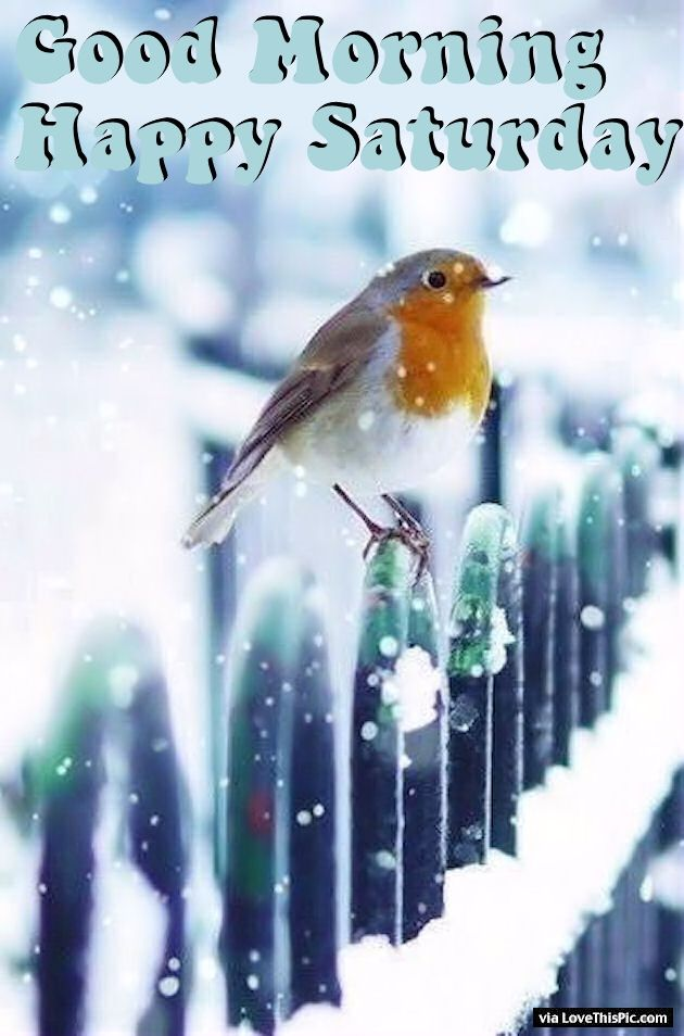 Image result for happy winter weekend images